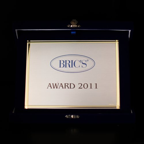 Bric's Award - Best Agent of the Year 2011